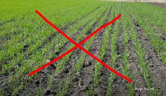 На каком поле нельзя копать с металлоискателем