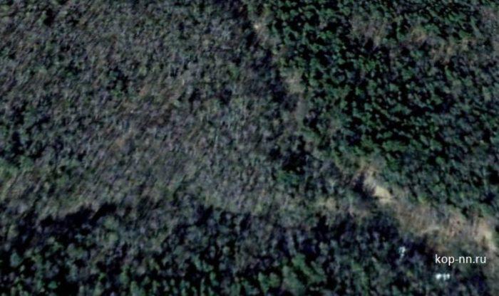 Лесной овраг на фото со спутника