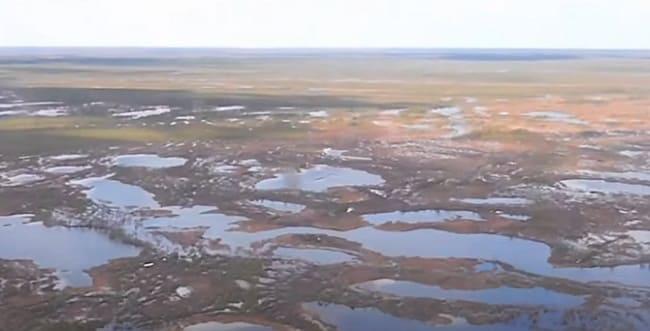 Болота северного края России