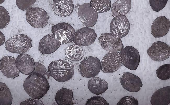 Кладовые монеты чешуя